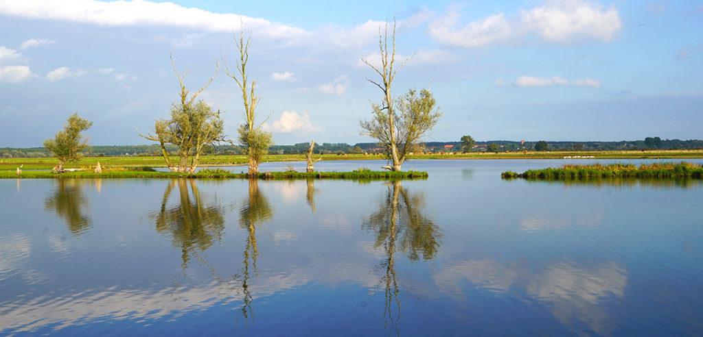 Havellandschaft