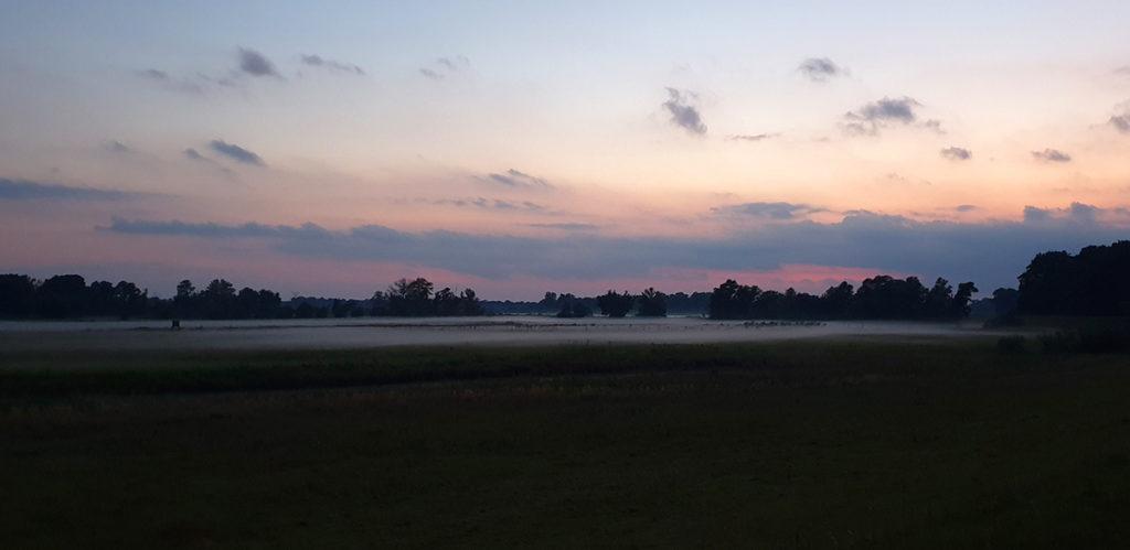 Abendstimmung an der Havel mit Nebel