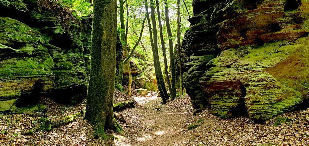 Wandern in Luxemburg - Landschaft am Siweschlëff