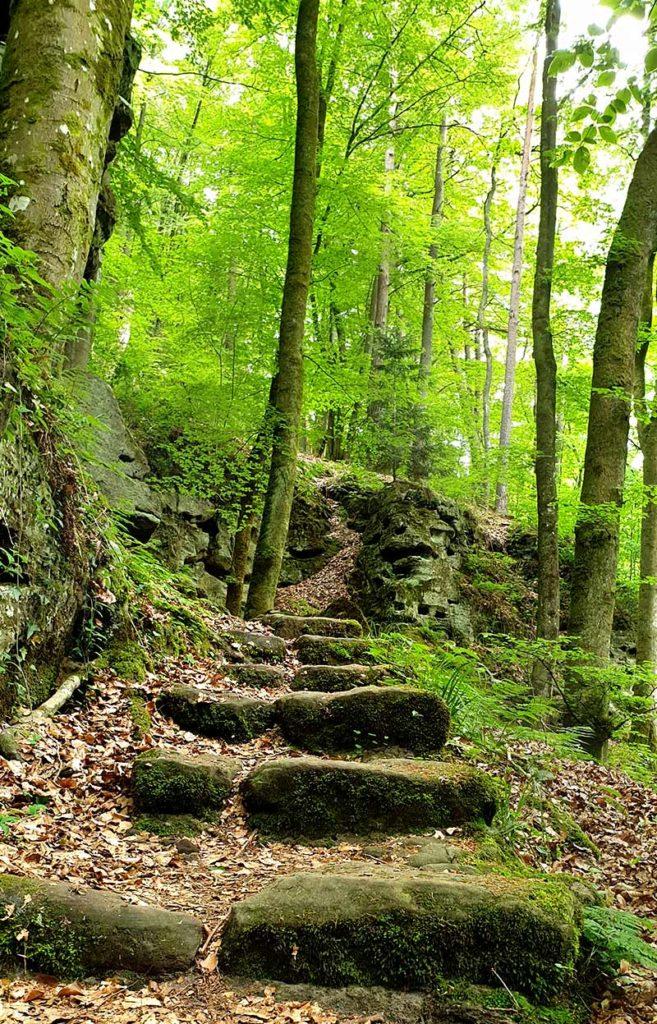 Wandern in Luxemburg - Ponteschgronn