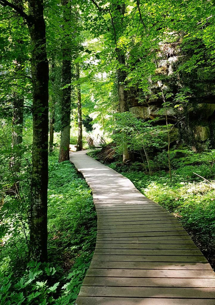 Wandern in Luxemburg - Weg zur Kallektuffquelle
