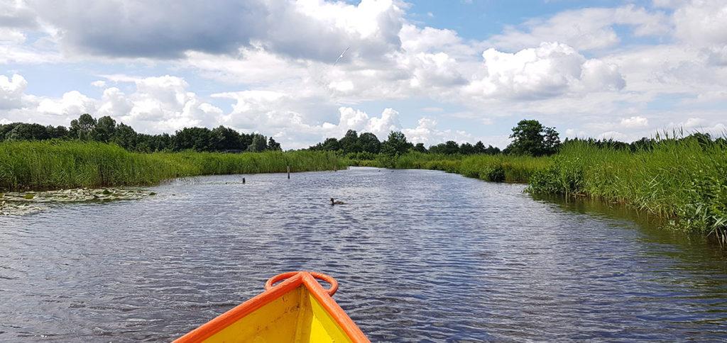 Bootstour durch Giethoorn - Holland - Niederlande - Bovenwijde - Naturschutzgebiet