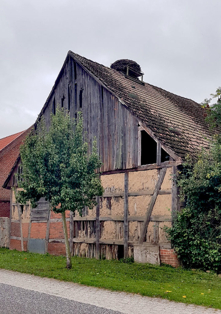 Altes Bauernhaus mit Storchennest - Rühstädt
