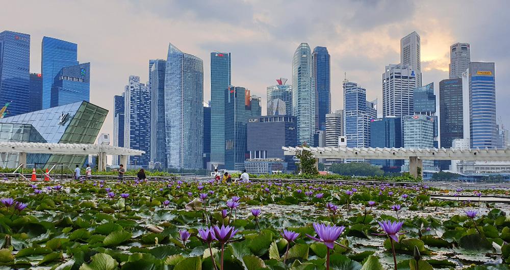 Skyline Marina Bay Lotusblüte Singapur