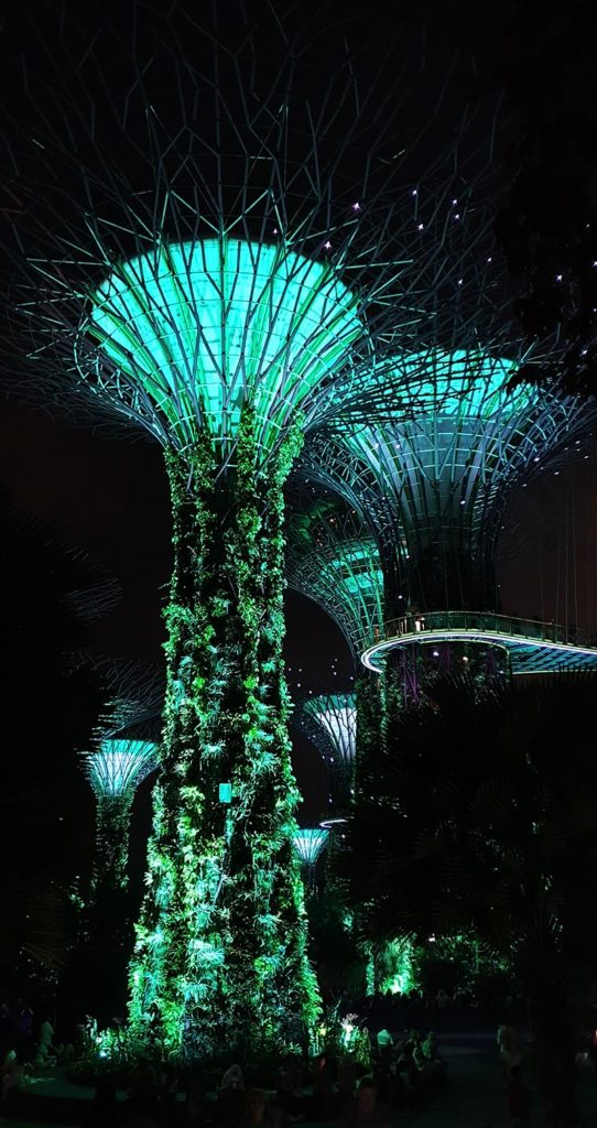 Supertrees Lightshow Singapur